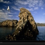 gull-island-alaska-91799-lw