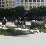 the-mustangs-of-las-colinas
